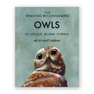Boxed Cards - Owl Notecards - The Flying Owl