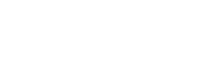 The Flying Owl