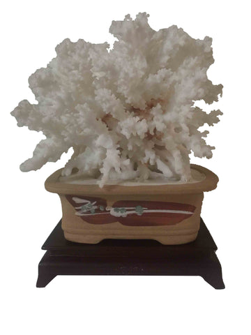 Natural White Coral Sculpture