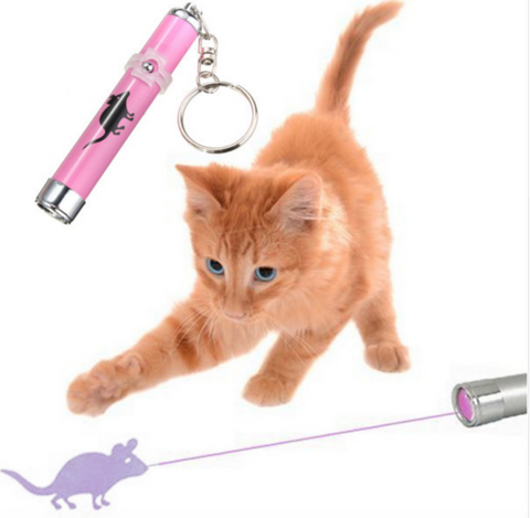 Laser Cat Toy-Free + Shipping