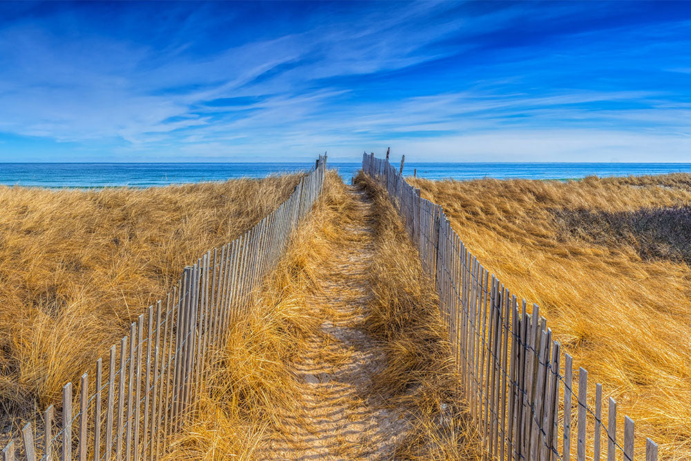 Landscape photo of a dune path leading to the beach - Duxbury Beach, Massachusetts