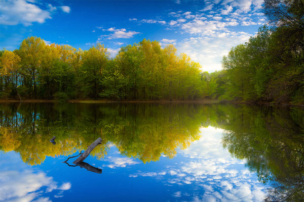 Afternoon light reflection at Brooks Pond - Medford, Massachusetts
