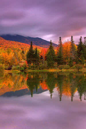 Peak fall foliage reflected on a lake - White Mountains, New Hampshire