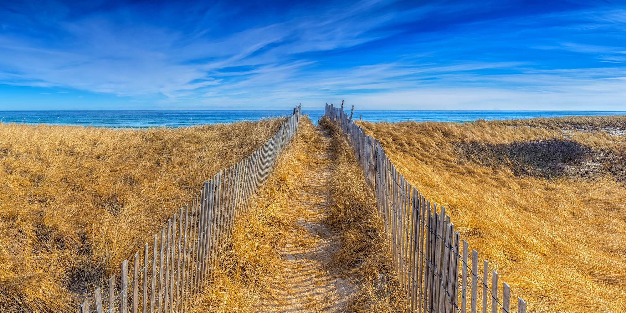 Dune path leading to the beach - Duxbury Beach, Massachusetts