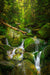 Cascade along the Falling Waters Trail - White Mountains, New Hampshire