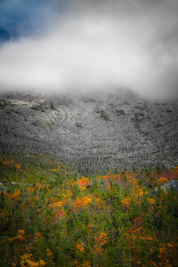 Fall foliage and autumn snow on Mount Adams - White Mountains, New Hampshire