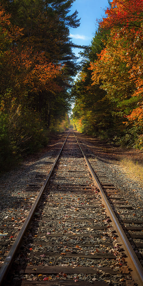 Railroad with fall foliage - Oxbow National Wildlife Refuge, Massachusetts