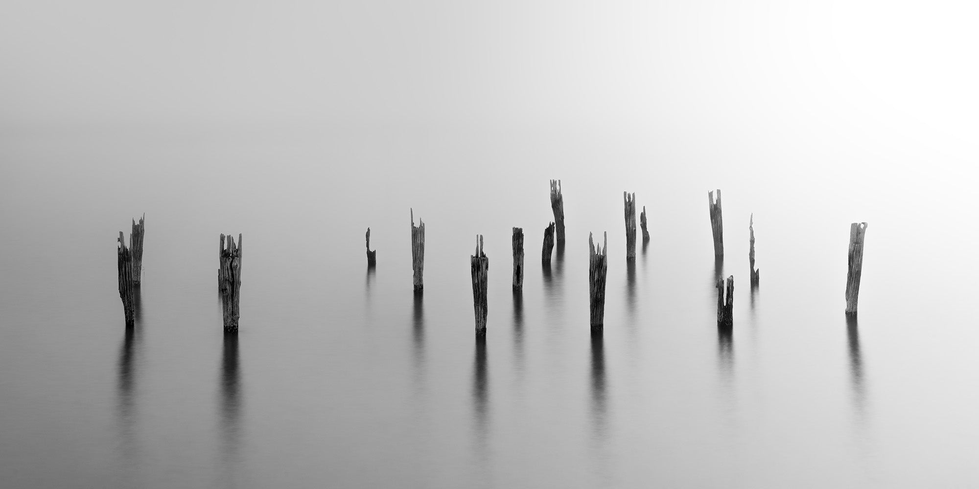 Decaying pilings covered in fog over the Boston Harbor - Massachusetts