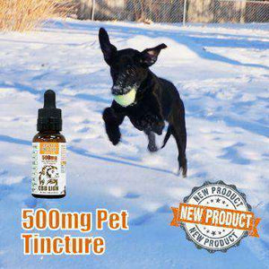 CBD Lion 500mg CBD Pet Tincture 30ML - icbdoil.com