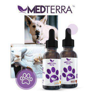 Medterra 300mg CBD Tincture For Pets 30ML - icbdoil.com