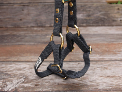 Black Just Hemp Adjustable Step-In Dog Harness Brass