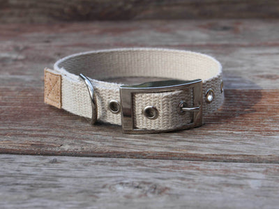 Tongue Buckle Just Hemp Dog Collar
