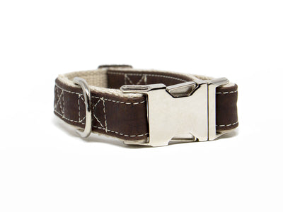 Signature Cork Leather Dog Collar in Saddle Brown