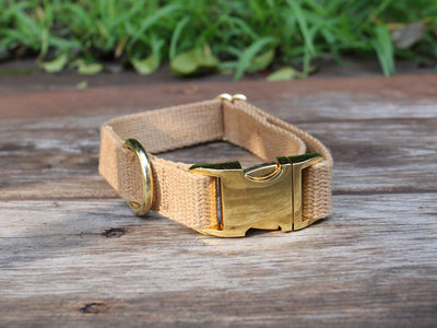 Just Hemp Dog Collar Tea-Stained with Brass Hardware