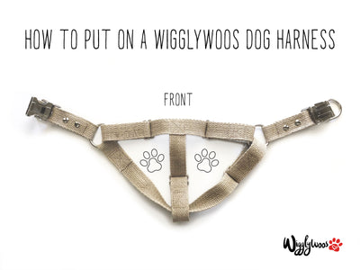How to put on an adjustable step-in dog harness