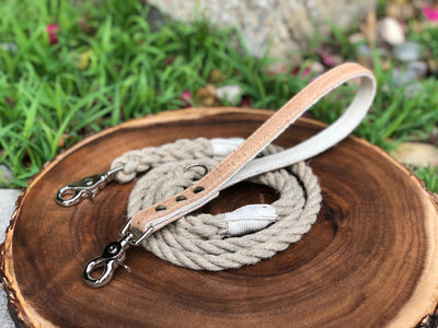 2-in-1 Interchangeable Dog Leash with Cork Leather Handle Natural Cork