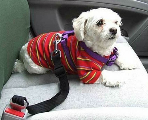 Dog Adjustable Car Safety Seat Belt