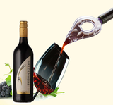 Wine Aerator Bottle Topper Pourer