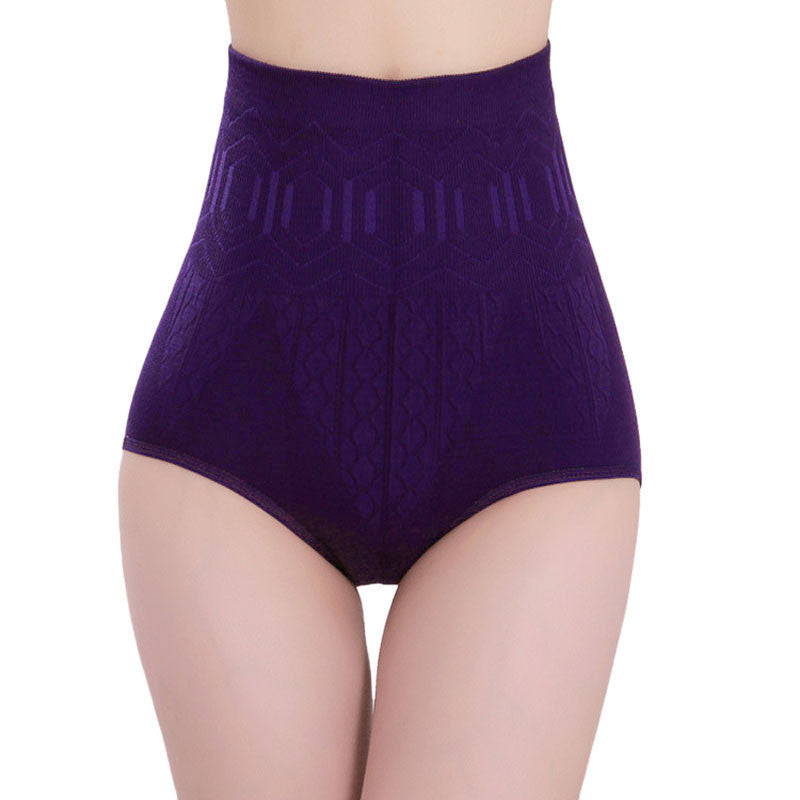 Sexy Womens High Waist Tummy Control Body Shaper Briefs Slimming Pants PP