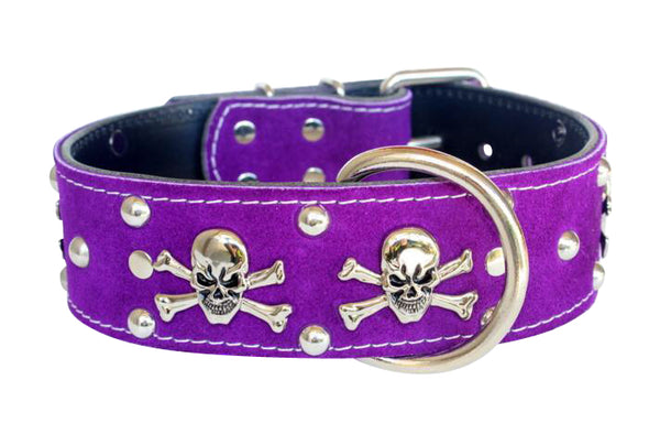 DECORATIVE & STUDDED COLLARS
