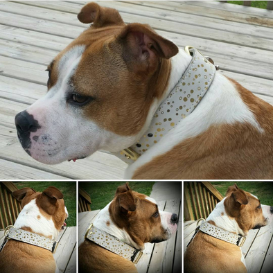 White And Gold Printed Leather Collar