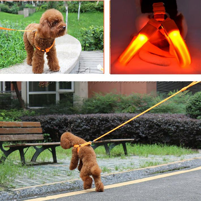 LED Pet Safety Harness [saves 6M dogs & cats on US roads] 💖🐶