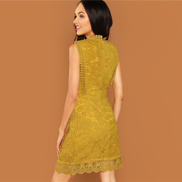 Ginger Contrast Lace Mock Neck Short Office Dress