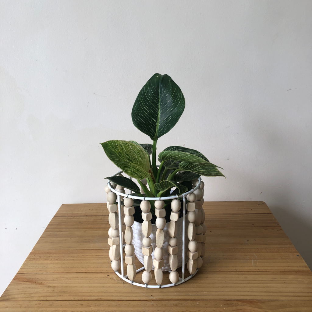 Wooden Bead Planter Sleeve in Small