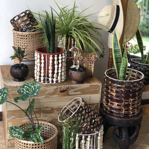 Coconut Planter Sleeve in Medium