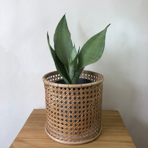 Solihiya Planter Sleeve in Large