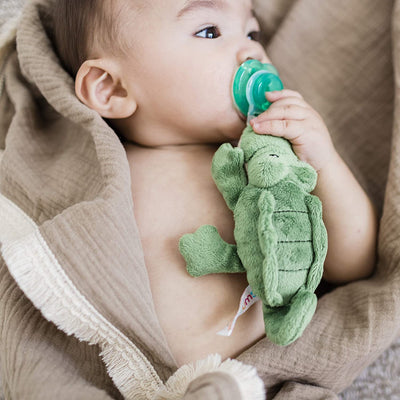 Nookums Paci-Plushies Buddies - Alligator Pacifier Holder - Plush Toy Includes Detachable Pacifier - Little Kooma