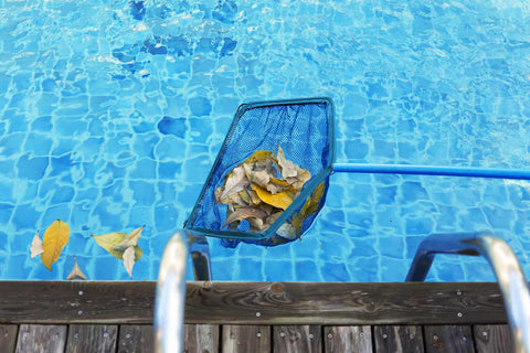 skimming swimming pool leaves after storm