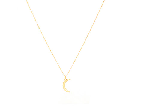Dainty Wishbone Necklace in 14K Gold