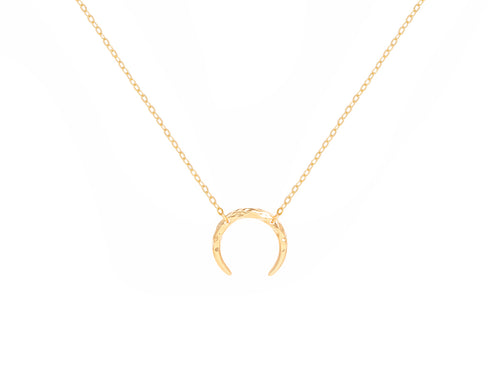 Crescent Moon Horn Necklace in 14K Gold