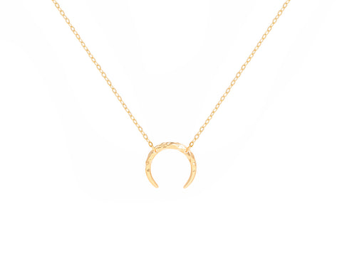Capricorn Zodiac Coin 14k Gold Necklace