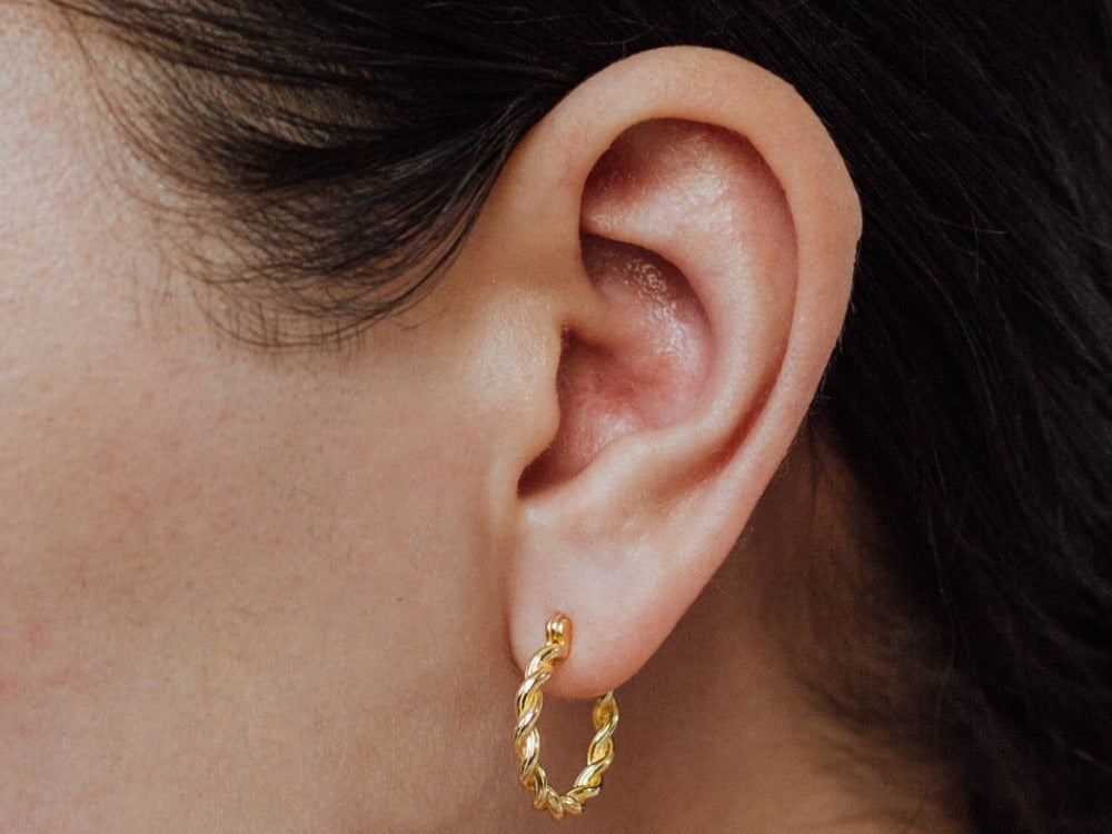 Ivy Twisted Hoop Earrings in 14k Gold