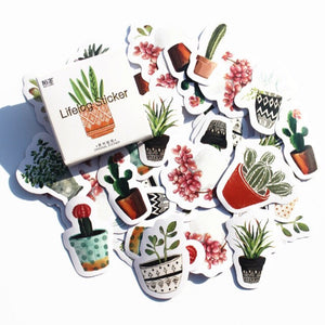 Stickers, cactus - Wang's Wonderful World