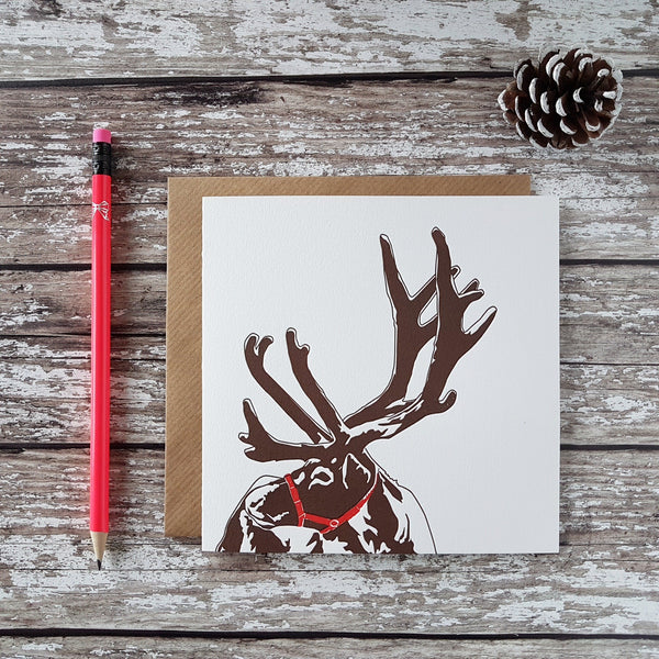 Penguin Letterpress Reindeer Christmas Card - HUEBOW
