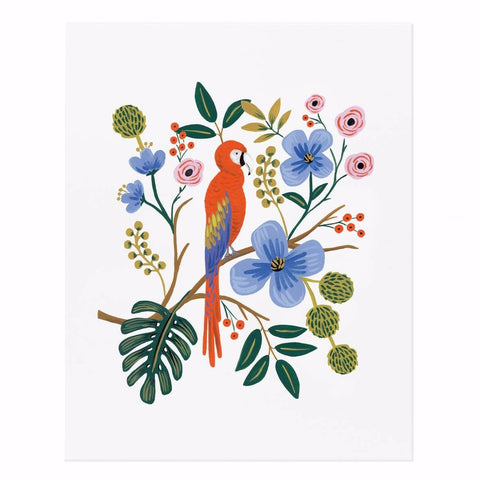 Rifle Paper Co. Macaw Art Print (small corner crease)