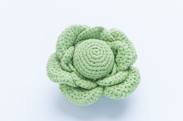 Intro to Crochet (Cabbage)