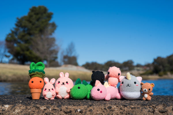 Upgrade to Mentorship from Express Amigurumi Workshop