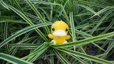 tiny rabbit hole - crochet knit pokemon psyduck amigurumi pattern