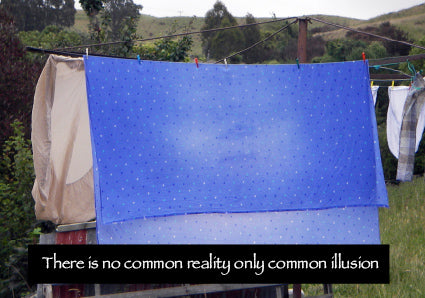 There is no common reality, only common illusion