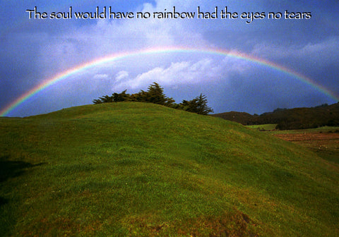 507 The soul would have no rainbow, had the eyes no tears