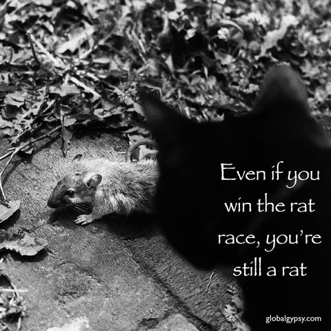 41 Even if you win the rat race, you're still a rat