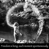 23  Freedom is living each moment spontaneously