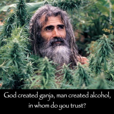 223 God created Ganja, man created alcohol, in whom do you trust?