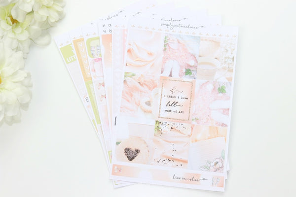 FOIL Aug SUB KIT Deluxe Kit (Rose Gold Foiled) // ECLP Planner Stickers