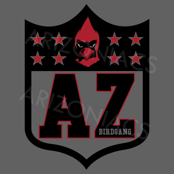 Arizona Football Shield