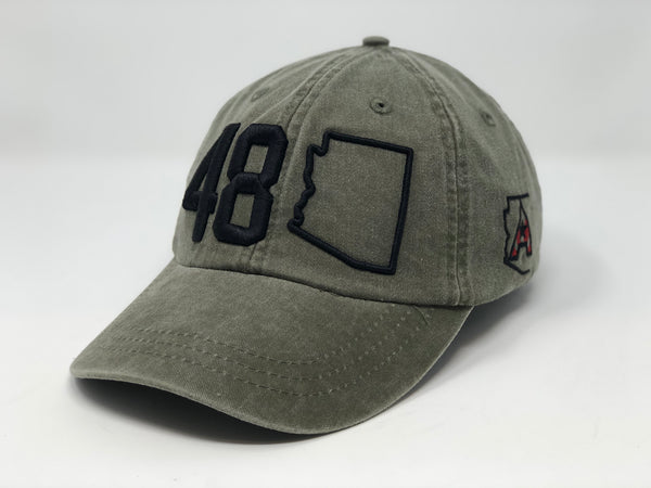 48 Arizona Dad Hat - Olive